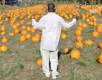 Black Man at Pumpkin Patch Stock Image