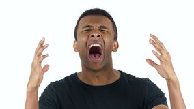 Black Man Screaming, white Background. Designer , young man , handsome stock video