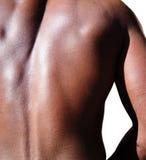 Black man torso Stock Photography