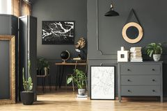 Black map on grey wall in dark living room interior with plants. And poster. Real photo concept stock photos