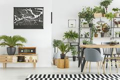 Botanic dining room interior. Black map on white wall above a wooden cupboard in botanic dining room interior stock photo