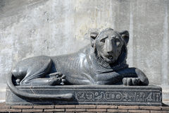 Black marble lion statue located the in Vatican Museums Stock Image