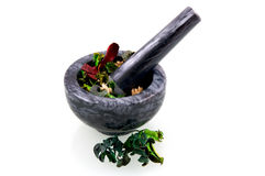 Black marble mortar with herbs Stock Photos
