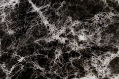 Black marble texture with lots of contrasting veining Royalty Free Stock Photo
