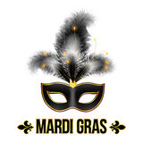 Black Mardi Gras carnival mask with feathers Royalty Free Stock Images