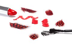 Black mascara and bright orange lipstick Royalty Free Stock Photos