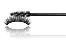 Black mascara brush and false eyelashes close-up Stock Photography