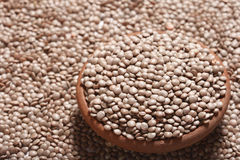 Black masoor dal an Indian Lentil. Black Masoor Dal is a bushy annual plant of the legume family, grown for its lens-shaped seeds. A large percentage of Indians Royalty Free Stock Photos