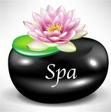 Black massage/spa pebble as background with flower Stock Photo