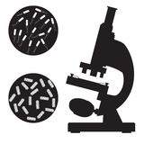 Black medical microscope and bacterium. Stock Images