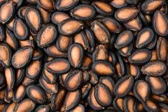Black melon seed Stock Photo