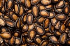 Black melon seeds Stock Image
