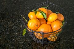 Several oranges fill a black metal basket on black granite count. A black metal basket on black granite kitchen counter is filled with bright mandarin oranges royalty free stock photo