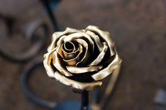 Black metal rose Stock Photos