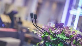 Black Microphone With Podium Stand. Microphone Mic Podium Stand Decorated With Fresh Colorful Flower Bunch stock photos