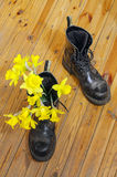 Black military muddy shoes with yellow narcissus Stock Photos
