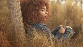 Black mixed race woman with big afro curly hair in lawn field with high dry autumn hay grass and sunset light. Black mixed race woman with big afro curly hair stock footage