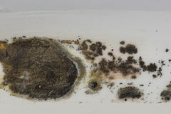 Black Mold Bathroom. Black mold grows on the caulk of a bathtub in this bathroom.  In large quantities the mold spores can cause breathing problems Royalty Free Stock Images