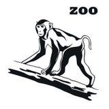 Black monkey mascot Royalty Free Stock Image