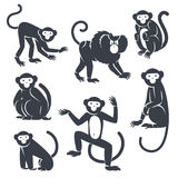 Black Monkeys Silhouettes  on White Stock Photos