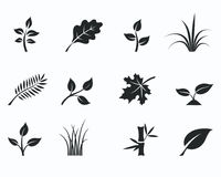 Black monochrome floral icon set Royalty Free Stock Images