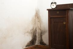 Black Mould. Buildup in the corner of an old house Royalty Free Stock Photography