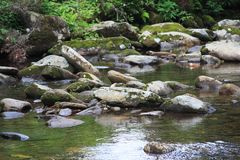 Black Mountain Stream Royalty Free Stock Images