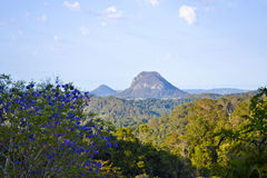 Black Mountain 8. Black Mountain, Sunshine Coast, Queensland, Australia Stock Photography