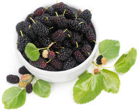 Black mulberries with leaves in white bowl Royalty Free Stock Photo