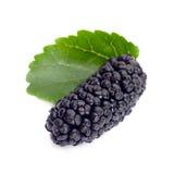 Black mulberry. Fruit closeup isolated on white stock photo