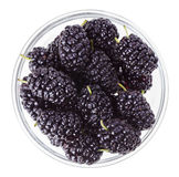 Black mulberry fruits in transparent glass Royalty Free Stock Images