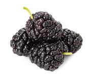 Black mulberry isolated on the white background stock photo