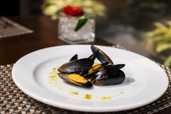 Black mussel. S on the white plate Stock Photo