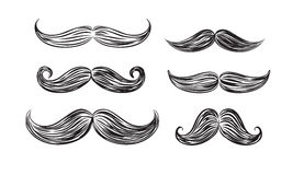 Black mustache icons. Vector black mustache icons on white background Stock Images