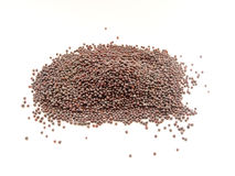 Black mustard seeds Stock Photos