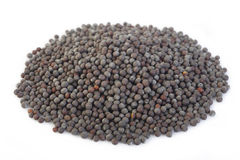 Black mustard seeds on white Royalty Free Stock Photos