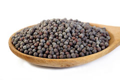 Black mustard seeds on white Stock Photo