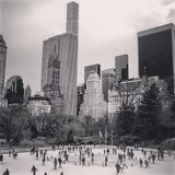 Black n White Central Park Royalty Free Stock Photo