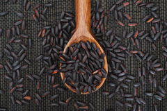Black Nerone Rice in wooden spoon Royalty Free Stock Photo
