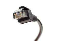 Black Network Cable Royalty Free Stock Images
