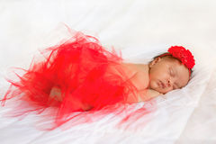 Black newborn baby wearing red tutu skirt Royalty Free Stock Images