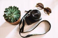 Black Nikon Dslr Camera Beside Green Succulent Plant Stock Photography