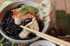 black noodles with pork and dumpling delicious Royalty Free Stock Photo