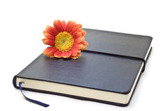 Black notebook Royalty Free Stock Image