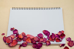 Black notepad. Realistic template notebook. Blank cover design. With dried rose petals and leaf. on cardboard background royalty free stock photography