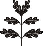Black oak branch. Vector illustration Royalty Free Stock Image