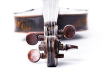 Black old violin. On white Stock Photography