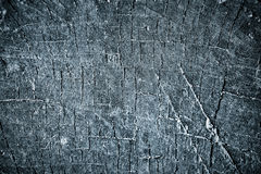 Black old wood, texture Stock Image