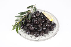 Black  olive Stock Photography