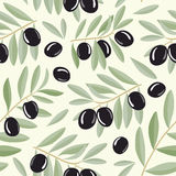 Black olive branches seamless pattern Royalty Free Stock Photography